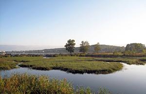 участки на можайском водохранилище фото