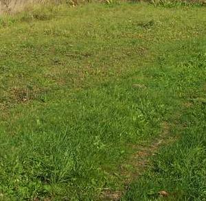 участки на можайском водохранилище